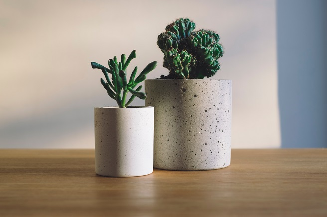2 concrete planters with plants in them