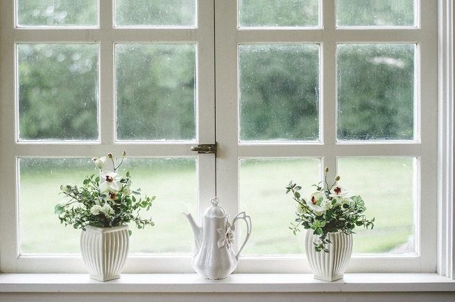 White window with plants in front